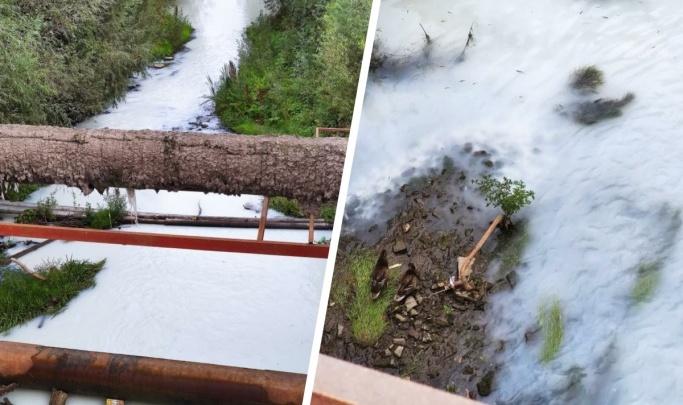 Генпрокуратура взыскала 1 миллион рублей с муниципального предприятия Новосибирска за загрязнение воды