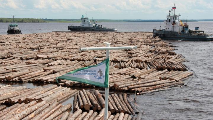 В Архангельск привели по Двине гигантский плот из тысячи бревен