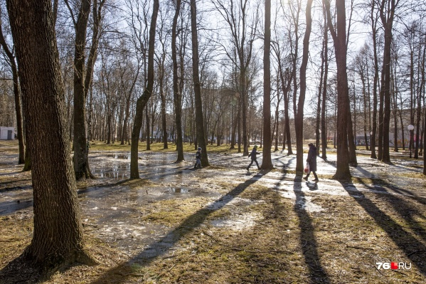 В выходные в Ярославлетемпература воздуха на 7–9 °C превысит климатическую норму
