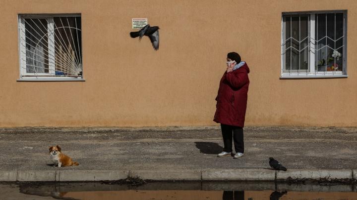 В ФАС объяснили рост масок на 97,5%: хроника коронавируса в Уфе
