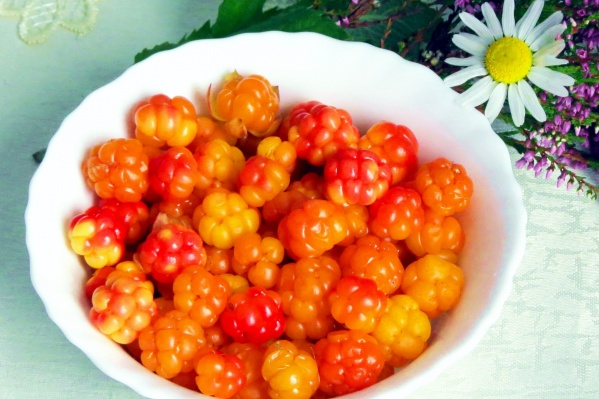 Сезон созревания морошки начинается в середине июля, самое время оправиться за полезной ягодой на болото