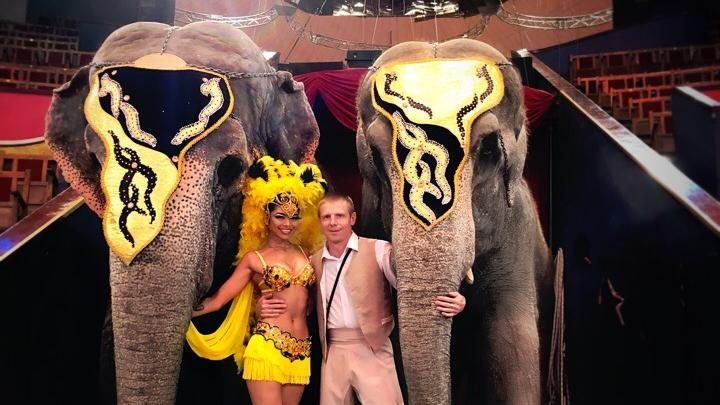 «Продолжают репетировать». Как индийские слонихи Варшавского цирка переживают изоляцию в Перми