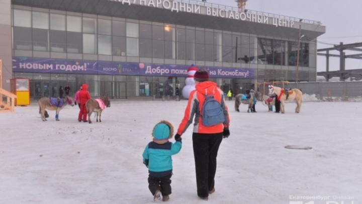 В «Екатеринбург-Экспо» на год перенесли мероприятие, которое и так проводится раз в год