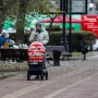 Более трети малообеспеченных семей остались без путинских пособий в Ростовской области