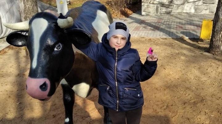 Вышел из школы и пропал: десятки волжан ищут 10-летнего мальчика