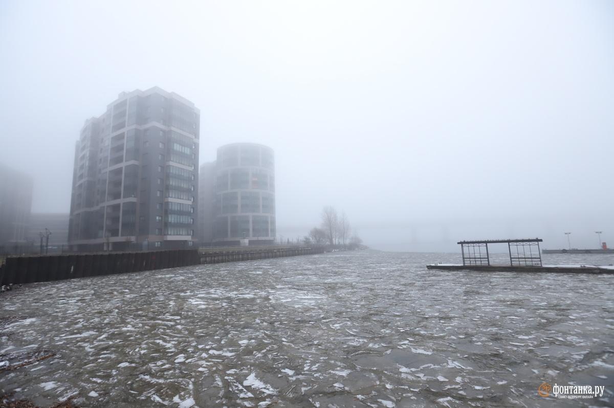 К середине января природа показала новое состояние. Туман внес разнообразие в жизнь уставших от серого цвета горожан. Санкт-Петербург, 10 января 2020 года