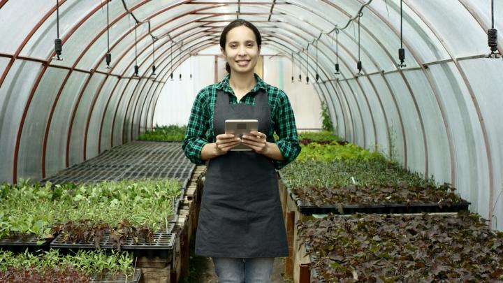 Как провести самоизоляцию с пользой на даче: садовый центр «Исаковский» снизил цены на все растения