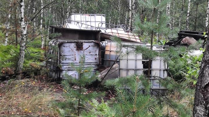 В лесу рядом с Дзержинском нашли свалку химотходов. Полиция ищет виновника