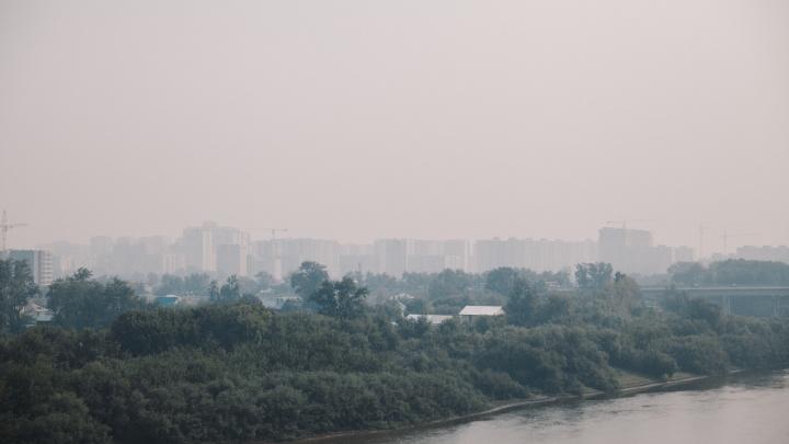 Власти рассказали, как будут справляться со зловонным запахом в Ишиме