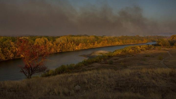 «Ситуация — сложная, от огня отделяет Хопёр»: в Волгоградской области второй день горят леса