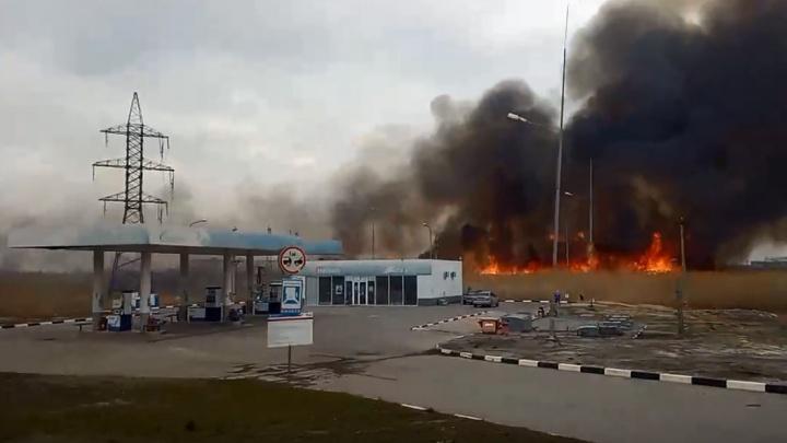 «Подбирается к АЗС»: в Волгограде рядом с заправкой загорелся камыш