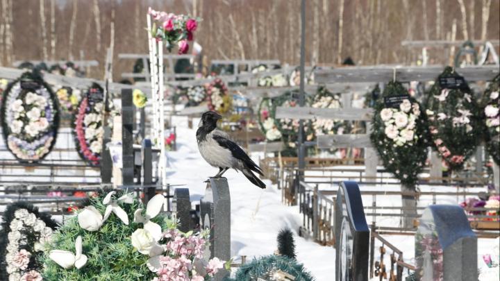 Прощание в масках, цветы — с доставкой: как коронавирус мешает похоронному бизнесу в Архангельске