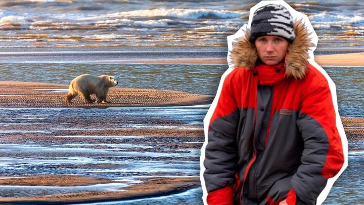 Моржи пугаются, а полярники выращивают огурцы: смотрим на Арктику глазами фотографа Андрея Паршина