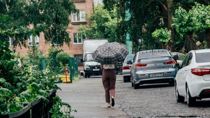 В Омской области ожидаются ливень и ветер до 22 метров в секунду