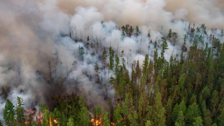 В Башкирии горят заповедники и природные парки
