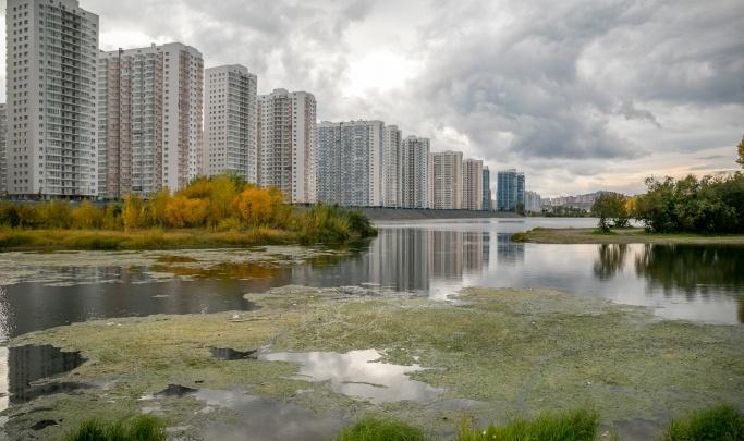 Правительство ищет подрядчика за 24 миллиона для очистки Абаканской протоки от водорослей. Ее уже чистили в прошлом году