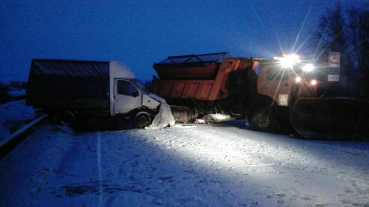 Смертельная дорога: два человека погибли на Омской трассе