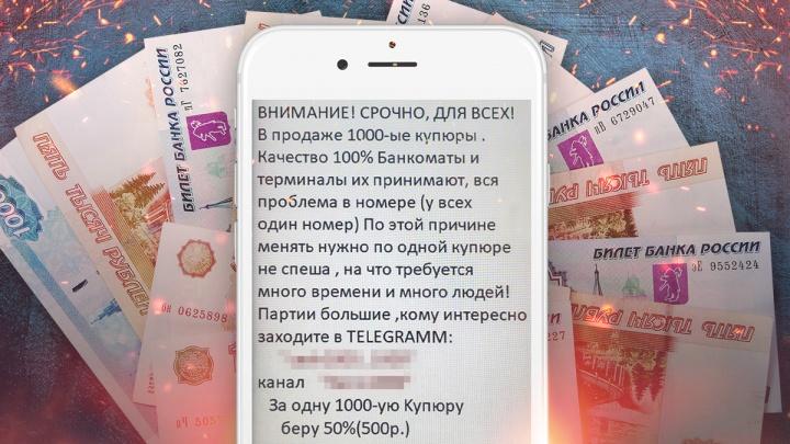 «За одну купюру беру 500 рублей»: стоит ли верить тюменцам, которые продают странные банкноты