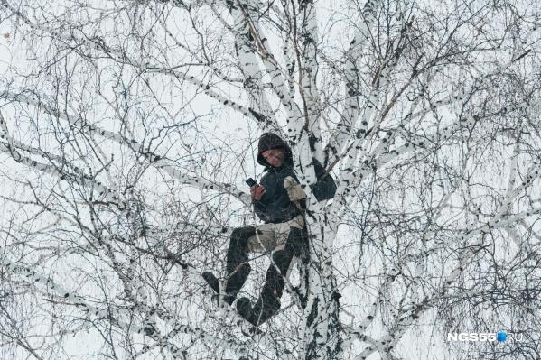 Недавно в эфире федерального канала омский чиновник заявил о том, что вышку в деревне тиктокера ставить нерентабельно