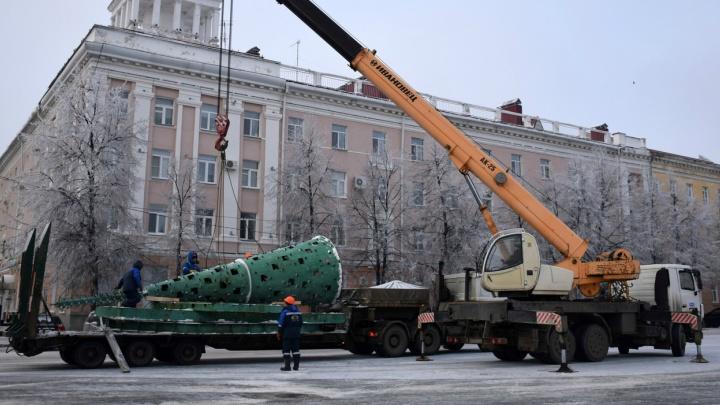 На центральной площади Кургана начали устанавливать новогоднюю елку