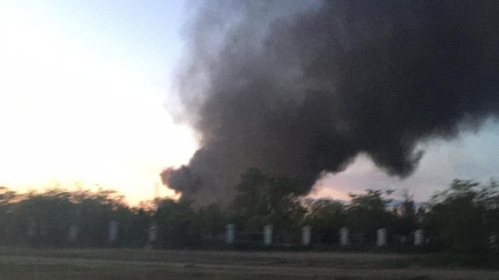 В Волгограде у кладбища возник пожар