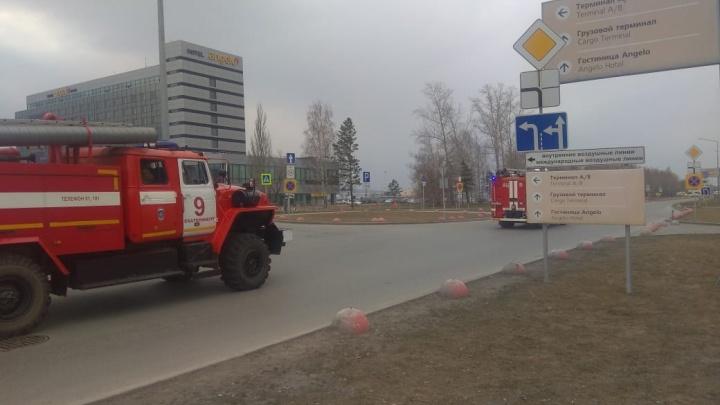 В Екатеринбурге из-за задымления экстренно садится самолет