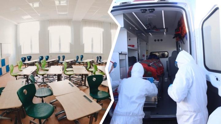 Тюменские студенты остаются дома из-за коронавируса: рассказываем, что делать родителям школьников