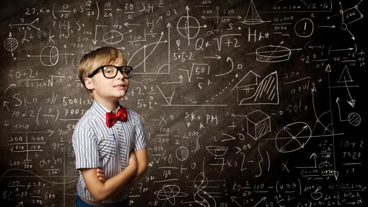 Вред или пользу принесёт профильная подготовка ребёнка с пятого класса, выясняли в Екатеринбурге
