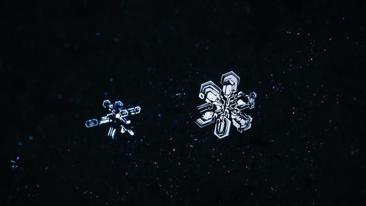 «Представил, будто они бороздят космические просторы»: волгоградец нашел прекрасное в декабрьских снежинках