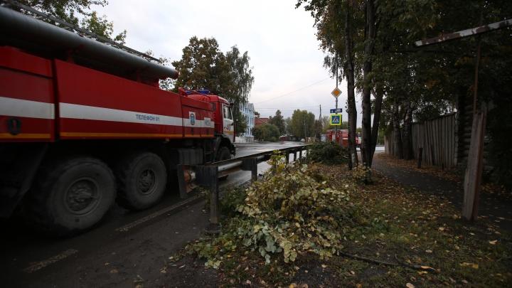 Под Заводоуковском на трассе горела фура. Очевидцы сняли на видео охваченную огнем кабину