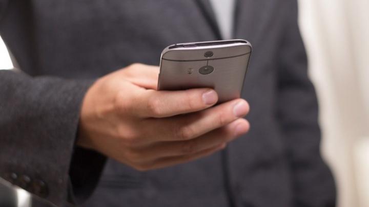 Жители Ярославской области будут выбирать депутатов по-новому: поставить галочку можно со смартфона