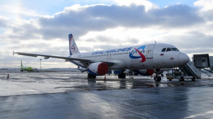 «Уральские авиалинии» объявили об открытии международного рейса из Кольцово