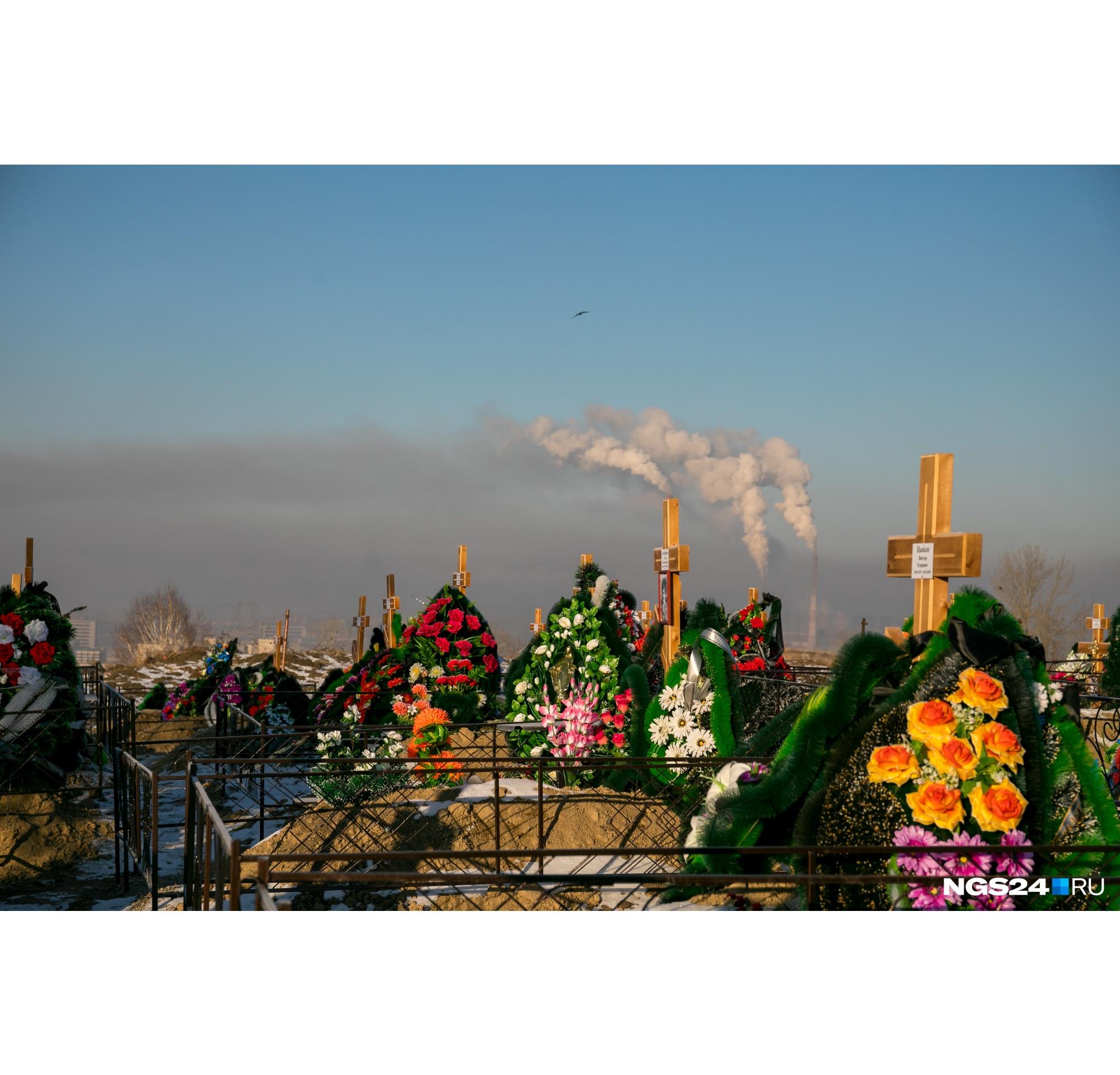 Вид на трубы ТЭЦ-1 во время НМУ с Шинного кладбища