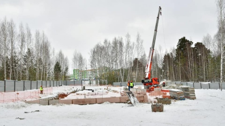 В Заельцовском районе начали строить лыжную базу — три километра трассы там уже готовы