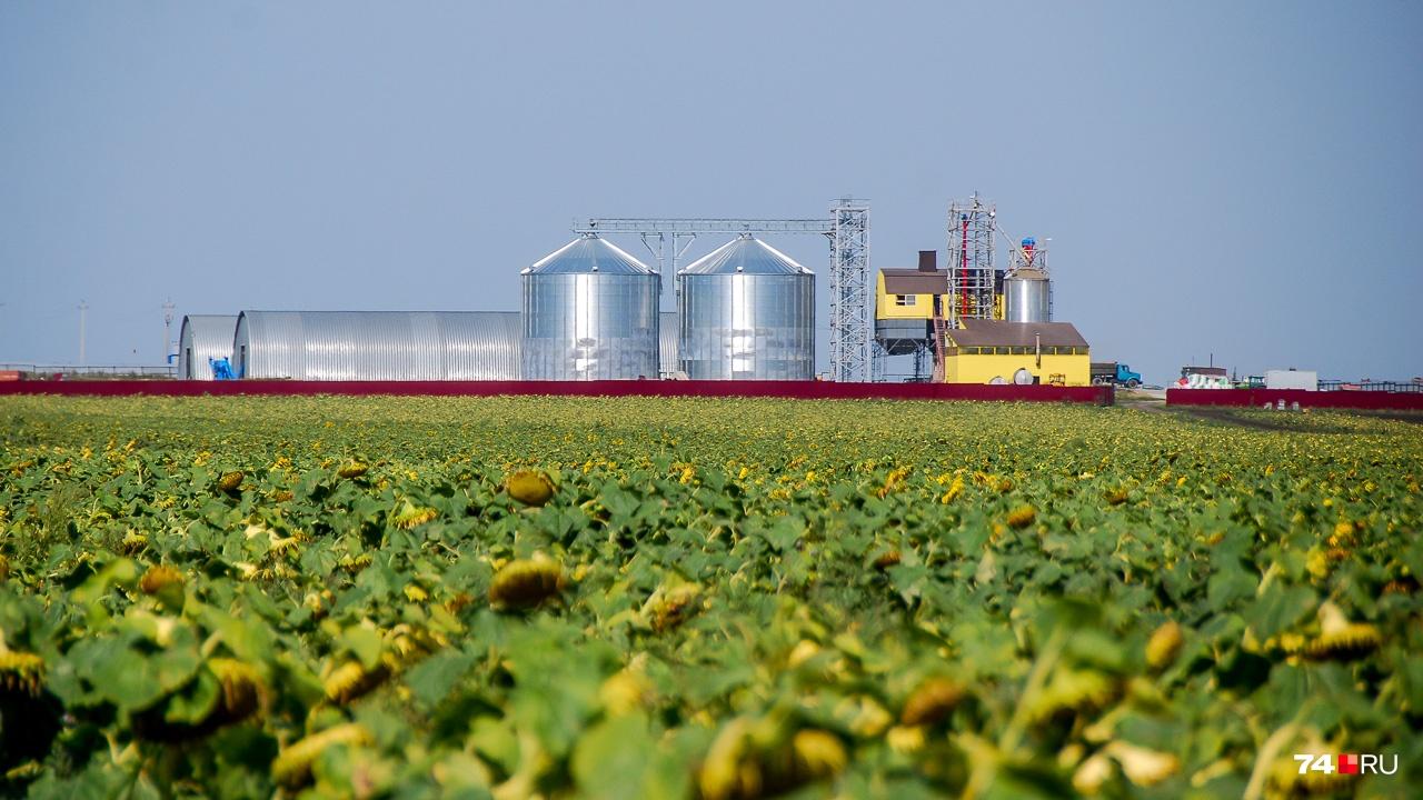 Новые зернохранилища хоть и выглядят обычными бункерами для зерна, на деле не так просты. В них встроена электронная система контроля, определяющая уровни и температуры, а ещё запускающая ряд механизмов, необходимых для правильного распределения зерна внутри отсека