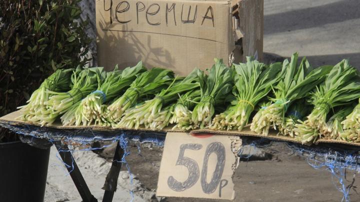 На улицах Новосибирска начали торговать «медвежьим луком»