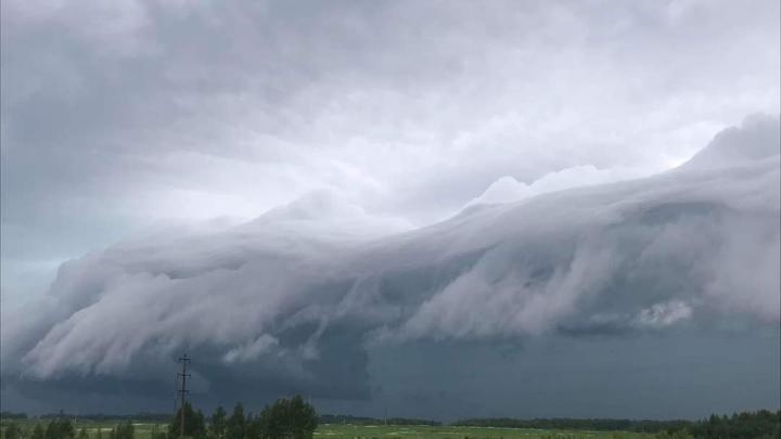 Экстренное предупреждение МЧС: на Ярославль идут грозы, ливни, град и порывистый ветер