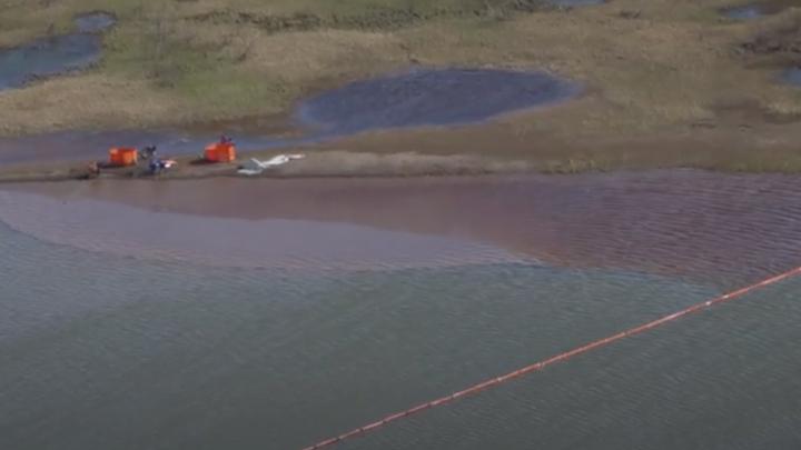 Федеральные журналисты «Редакции» сделали спецвыпуск про экологическую катастрофу в Норильске