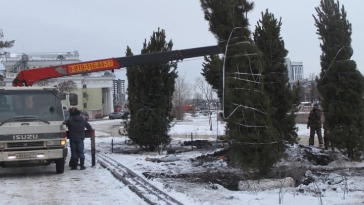 Власти Челябинска потратят 120 миллионов на озеленение центра города. Публикуем список улиц