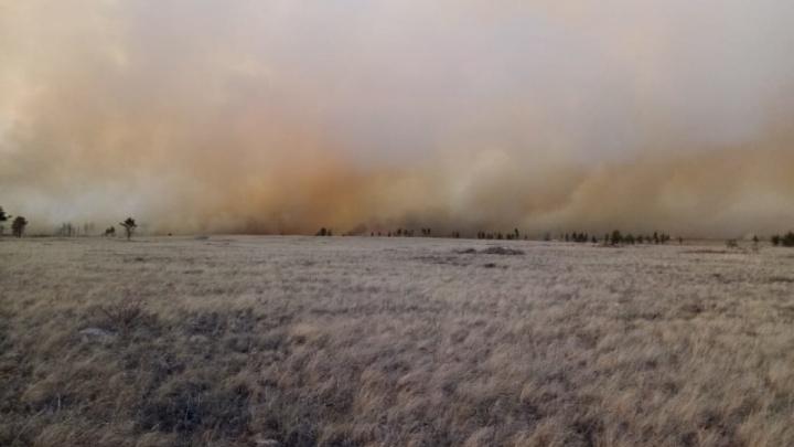 На тушение лесного пожара в Челябинской области направили дополнительно почти сотню спасателей