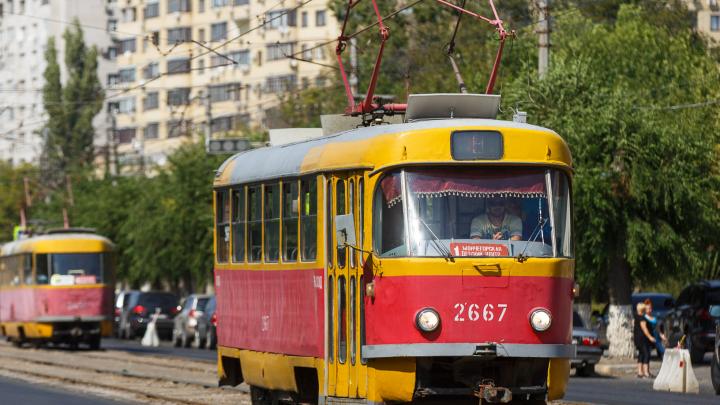 Многодетные волгоградцы требуют от мэрии вернуть трамвай № 1