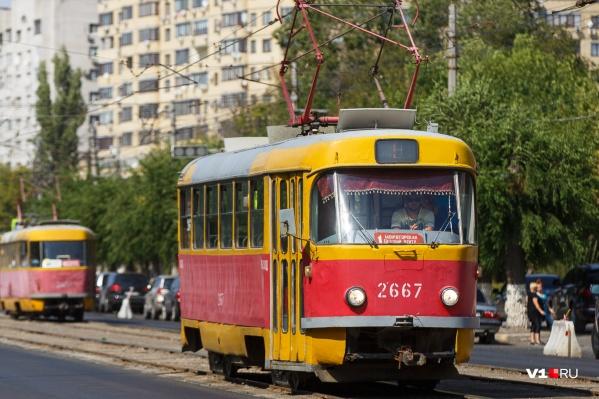 Единицу предлагают заменить тремя рейсами трамвая № 5