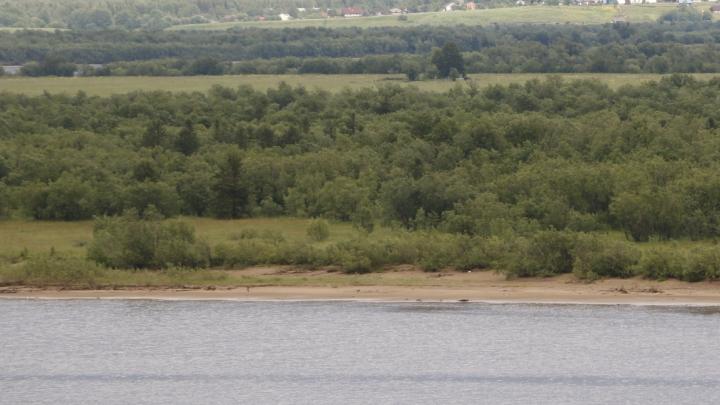 В Мезенском районе утонула 12-летняя девочка