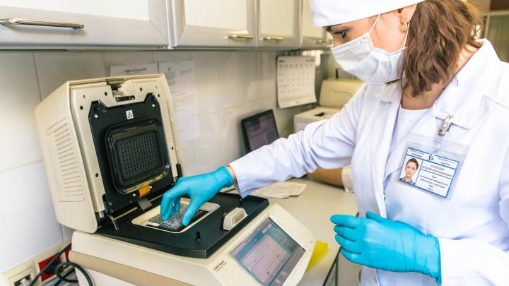 В Зауралье подтвердили пять новых случаев заболевания коронавирусной инфекцией