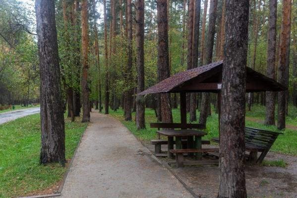 На Уралмаше находится самый большой лесопарк в регионе