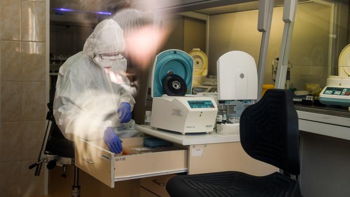 Свердловская область вышла на четвертое место в России по числу новых заболевших