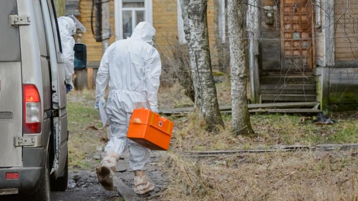 За сутки в Архангельской области выявили 346 случаев COVID-19. Информация регионального оперштаба