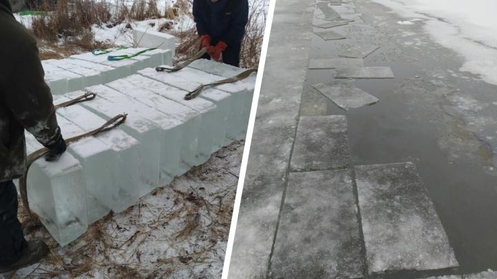 Для новогодних скульптур в Архангельске начали заготавливать лед: как это выглядит