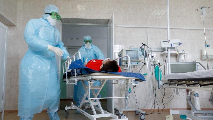 Заболевшие медики в Кудымкаре и четверо умерших пациентов с COVID-19: коротко о главном за 23 мая