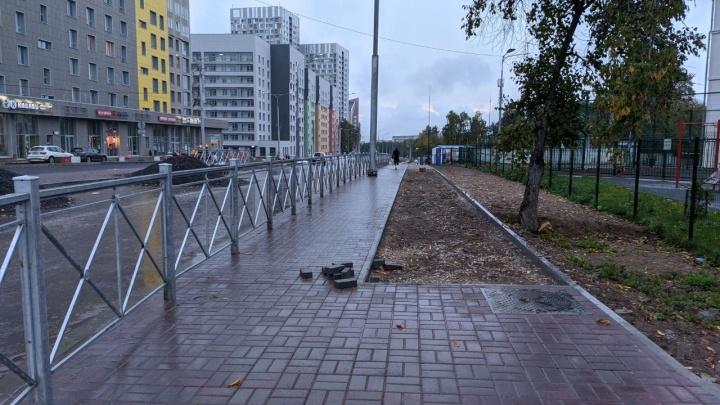 Мэрия Перми ответила активистам, раскритиковавшим реконструкцию улицы Революции
